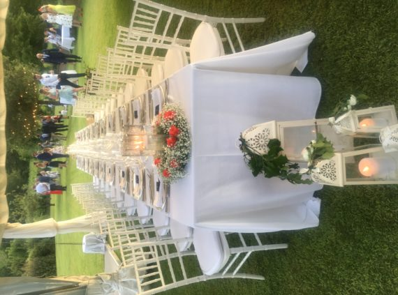 wedding in the garden surrounded by vineyards